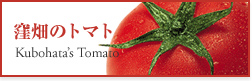 窪畑のトマト